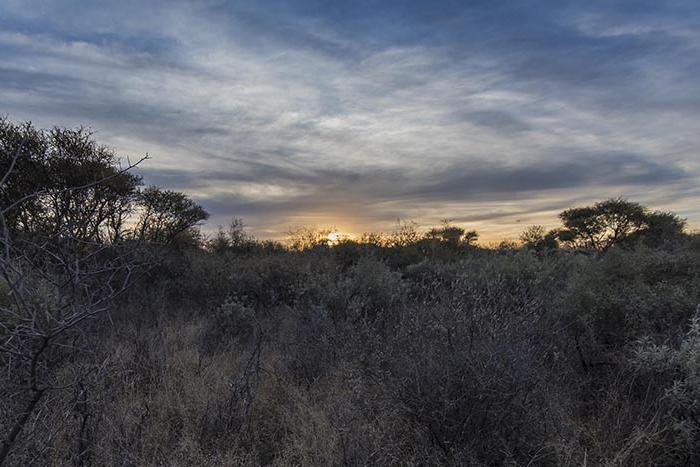 sunset122